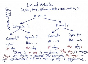 use of articles by kenan akarslan